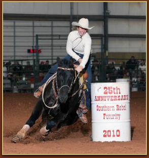 Black quarter horses barrel racing - photo#9